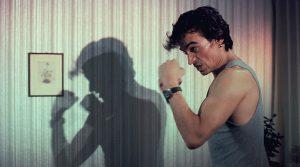 Schattenboxer